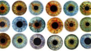 ألوان العيون وأسباب اختلافها علميًا
