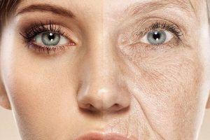 ما هي الشيخوخة؟