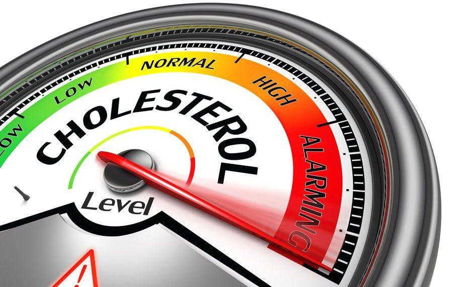نسبة الكولسترول الطبيعي في الدم