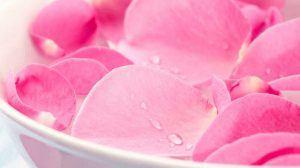 النشاء وماء الورد والبشرة