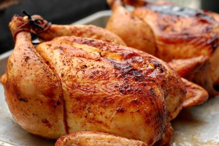 كل شيء عن السموم الموجودة في الدجاجكل شيء عن السموم الموجودة في الدجاج