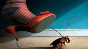 التخلص من الصراصير