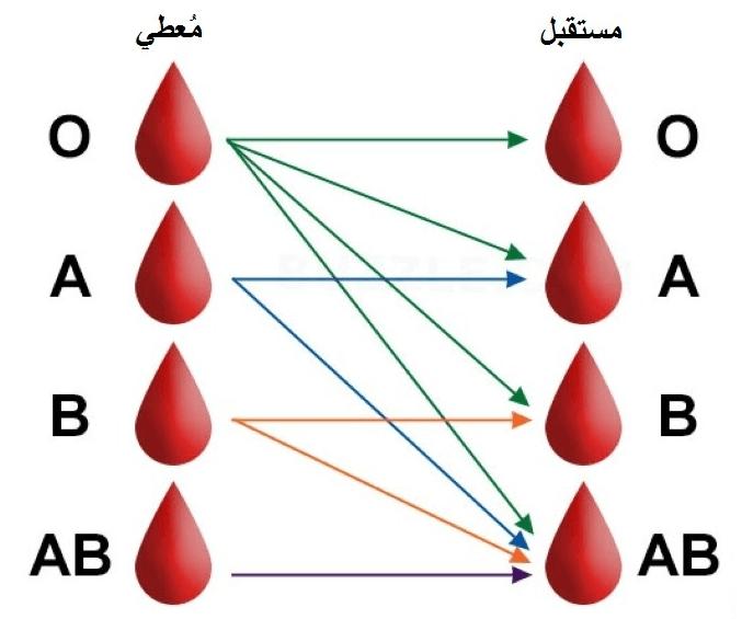 عملة مركبة يرجى الملاحظة ايش احسن فصيلة دم Sjvbca Org
