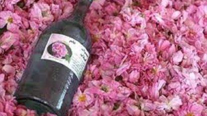 ماء الورد لتكبير الثدي وتجارب واقعية فعالة ومجربة