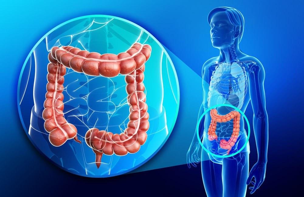 أسباب متلازمة القولون المتهيج والأعراض والتشخيص وطرق العلاج مجلتك