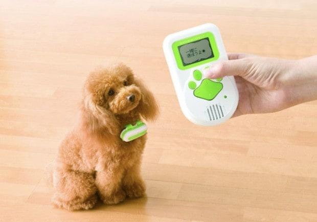 الجهاز الذي يترجم لغة الكلاب