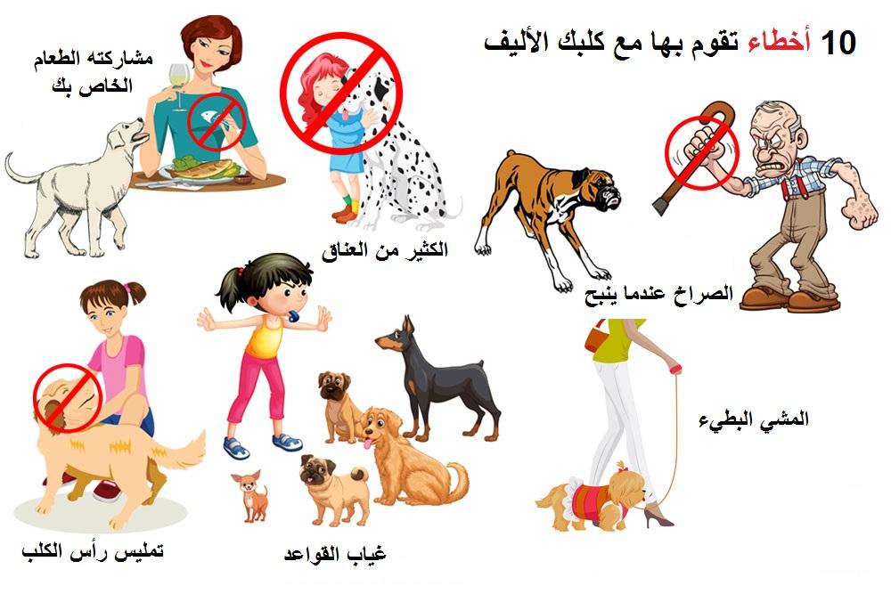 أخطاء تقوم بها مع كلبك الأليف