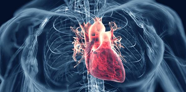 أطعمة لعلاج ارتفاع ضغط الدم