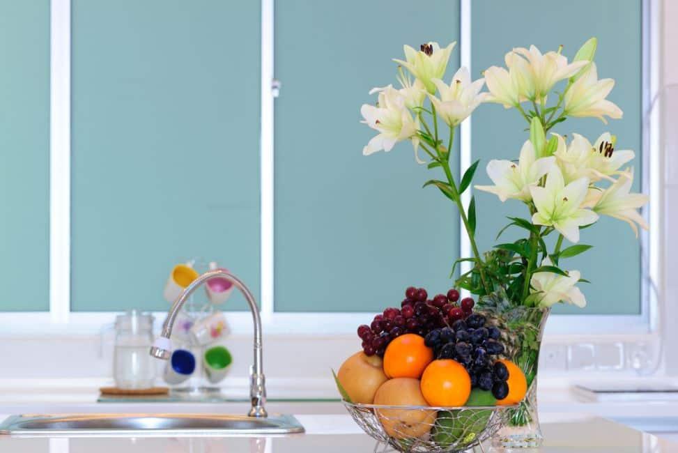 تنظيف نباتات الزينة