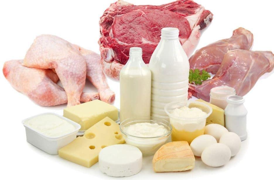 المأكولات التي يوجد فيها فيتامين B12 وحاجة الجسم اليومية منه