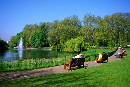 المحافظة على الحدائق والمنتزهات مطلب وطني