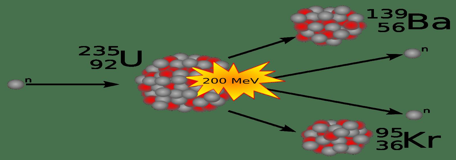 تفاعل الانشطار النووي لليورانيوم (U-235)