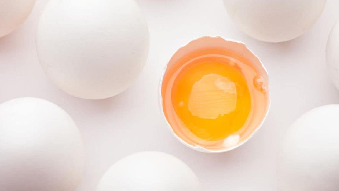 صفار البيض (المح)