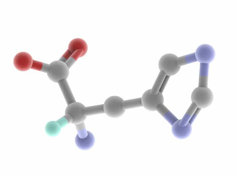 الأحماض الأمينية