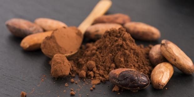 فوائد وأضرار الكاكاو