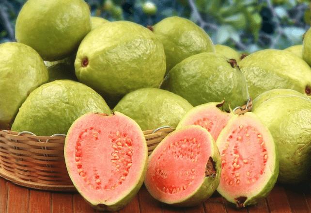 فوائد وأضرار الجوافة
