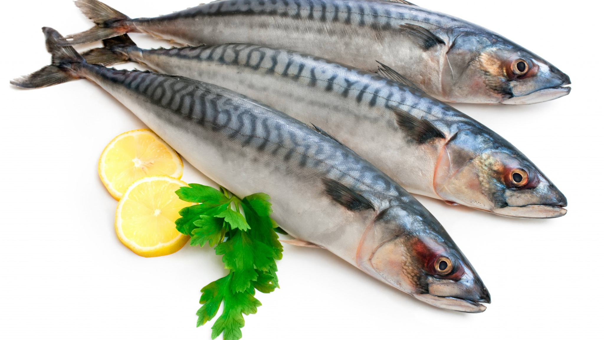 القيمة الغذائية لسمك السردين