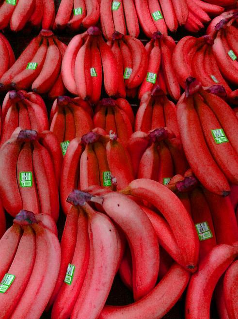 أغرب أنواع الفاكهة في العالم بالصور مجلتك