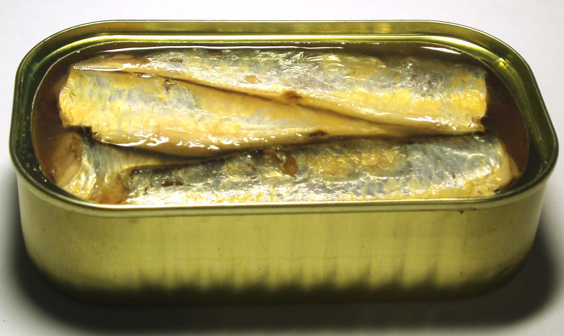 مخاطر تناول سمك السردين