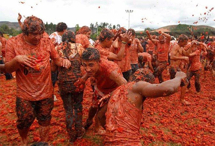 مهرجان تبادل الطماطم