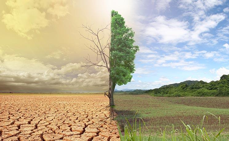لاحتباس الحراري وتأثبراته على البيئة