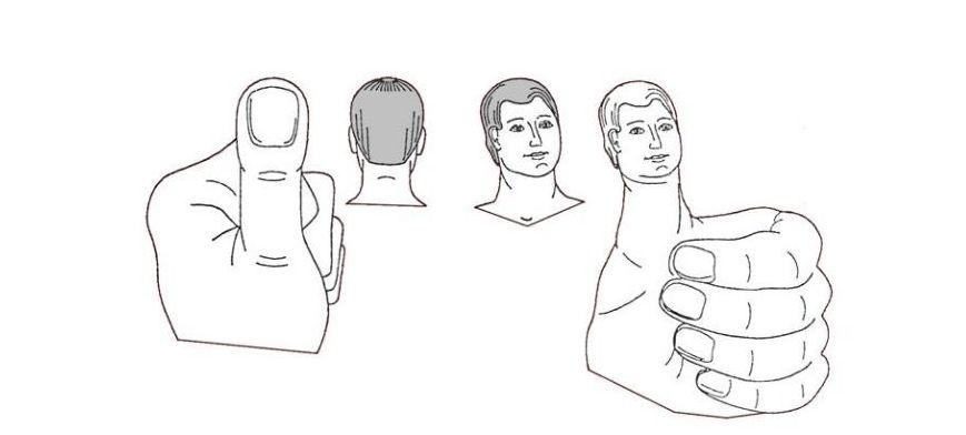 التماثل بين الرأس والإبهام