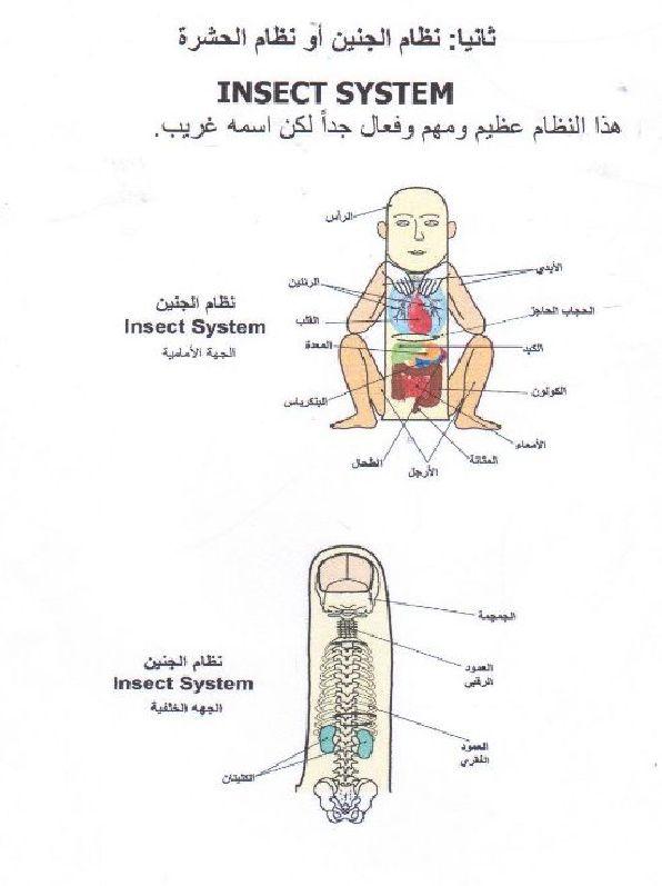 انظمة العلاج بالسوجوك