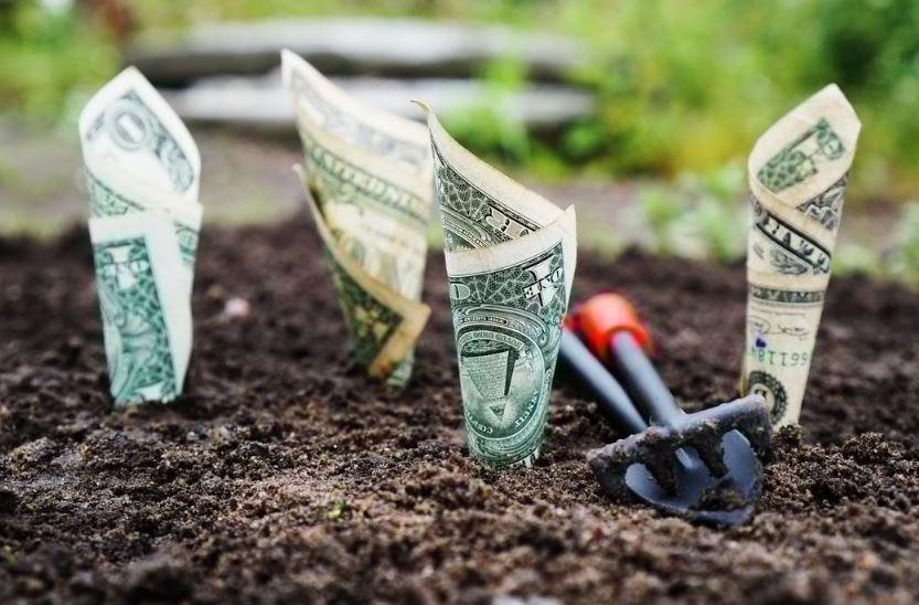 أفضل طريقة لاستثمار المال لديك مهما كان المبلغ