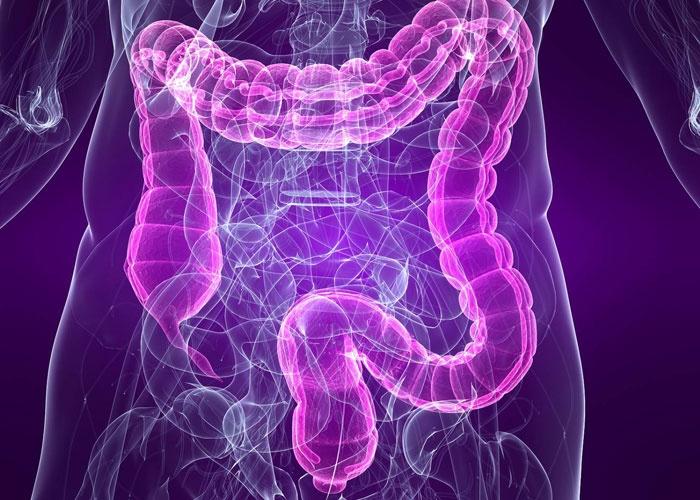 كيف يمكن معالجة التهاب الأمعاء مجلتك