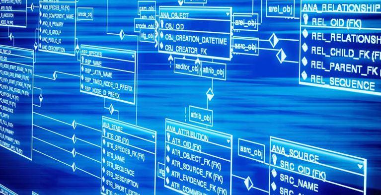 ما هي قواعد البيانات وأنواعها؟ وما المقصود بأنظمة إدارتها؟