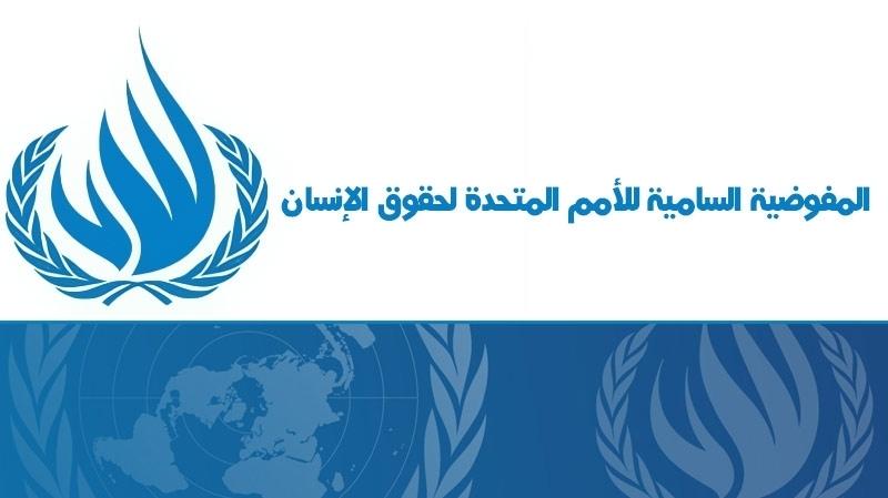 هيئة الأمم المتحدة لحقوق الإنسان