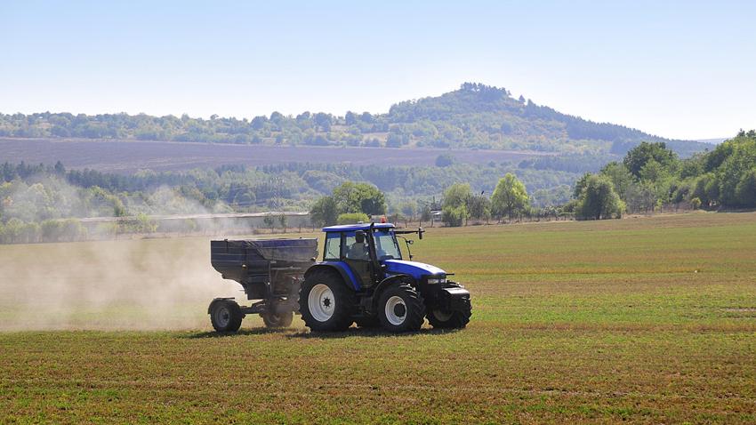 أصناف الزراعة واستخداماتها