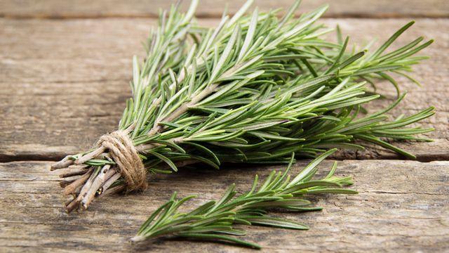 علاج الالتهابات بالأعشاب
