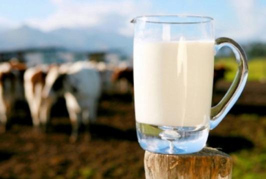 الفرق بين حساسية الحليب وحساسية اللاكتوز
