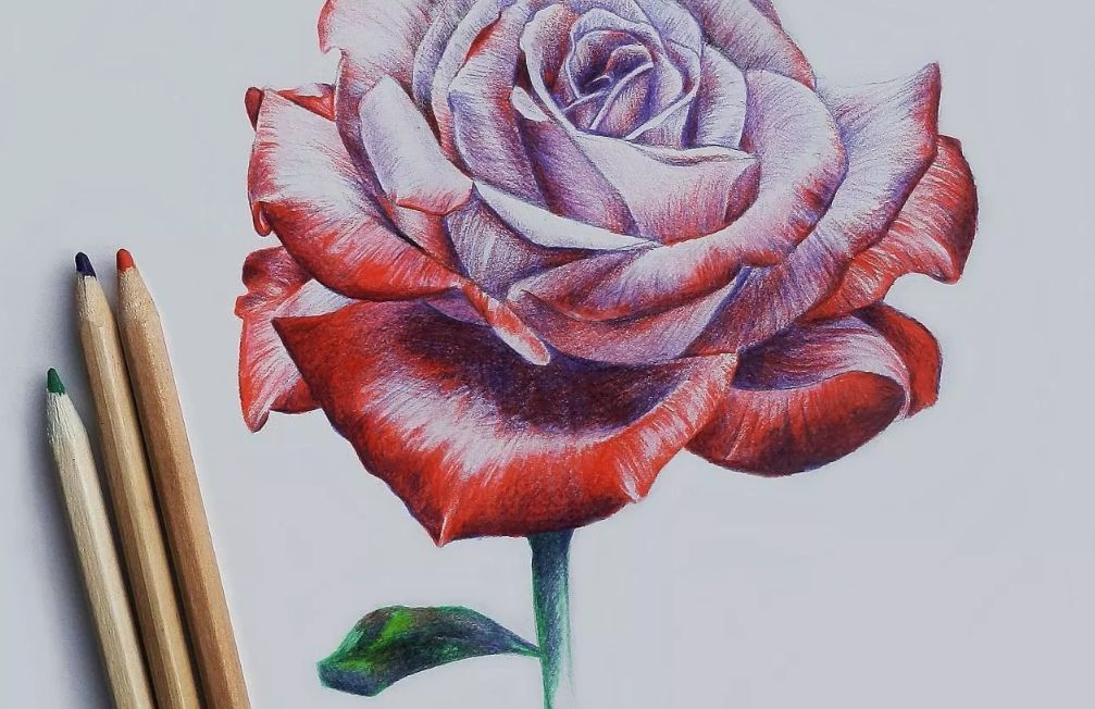 تعليم الرسم بالألوان الخشبية