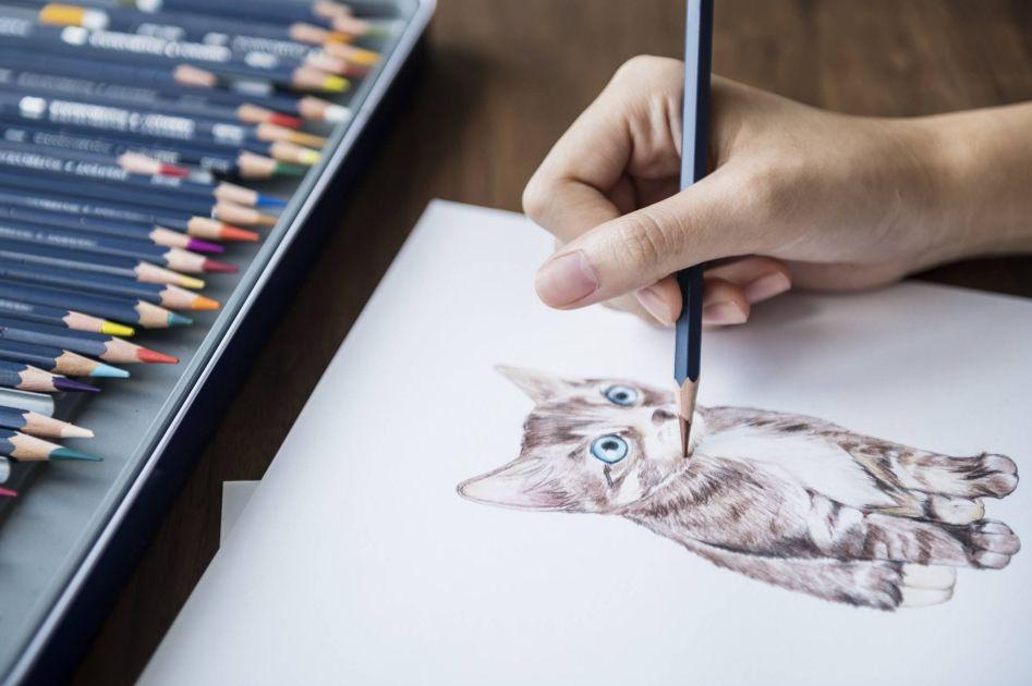 تعليم الرسم بالألوان