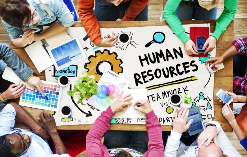 وظائف إدارة الموارد البشرية في المؤسسات