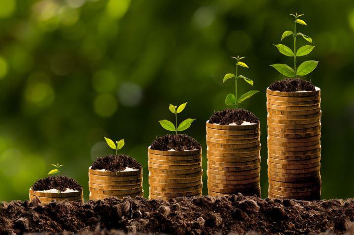 كيف تبدأ باستثمار مبلغ صغير؟ وما الخيارات الاستثمارية الأفضل كبداية؟