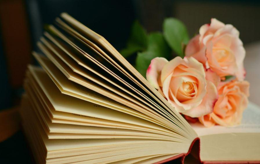 قراءة سريعة