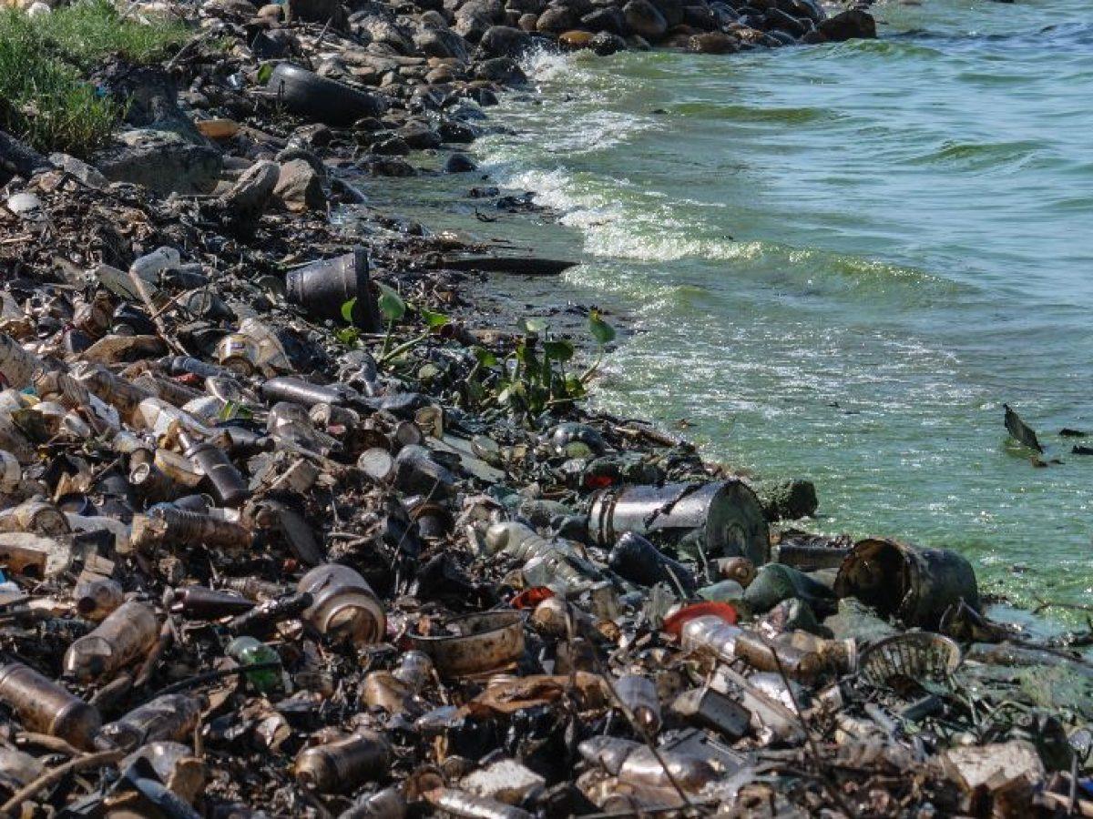 تلوث المياه الأسباب والعواقب والحلول المناسبة مجلتك