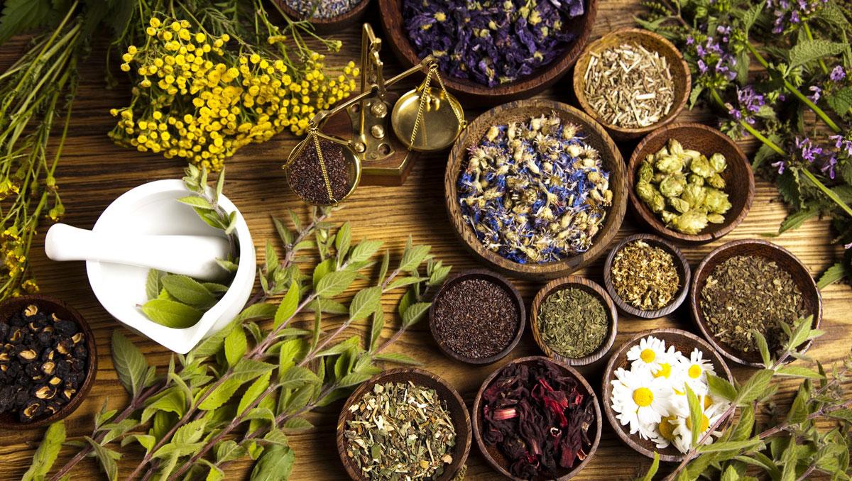 الأعشاب الطبية 2