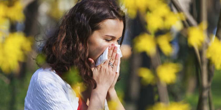 علاج حساسية الصدر بالأعشاب