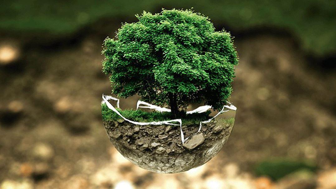 مفهوم التسويق الأخضر والأنشطة التسويقية الخضراء (دليل كامل)
