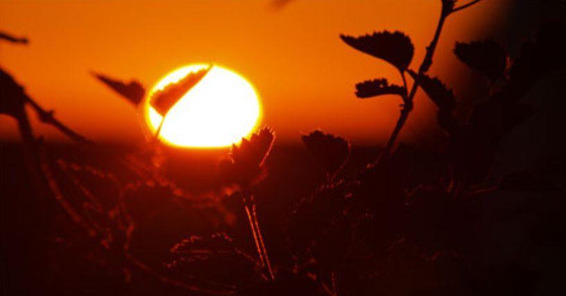 15 دقيقة كافية لتبدأ قصة حروق الشمس للوجه وعلاجها ولكن هذا ليس كل شيء
