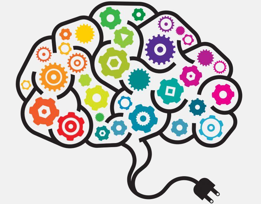 12 – عليك تدريب دماغك بانتظام