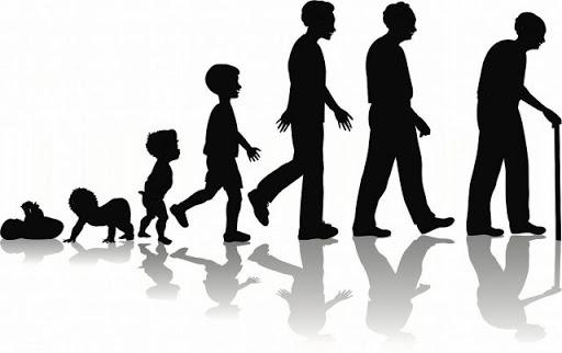التنمية البشرية 2