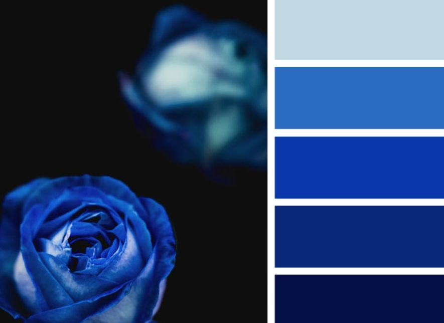 أزرق بحري