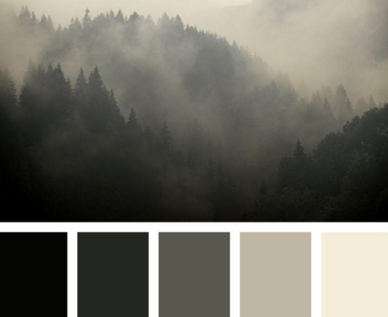 الأسود الألوان التي تناسب اللون الرمادي