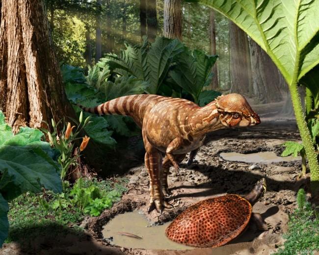 الديناصورات الصغيرة