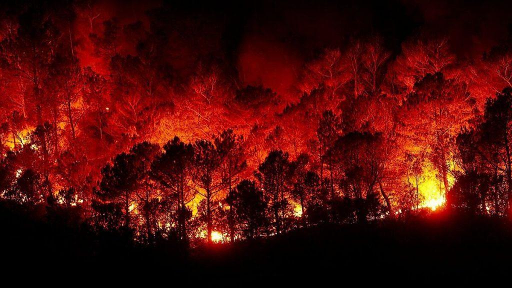 تغير المناخ يسبب الحرائق